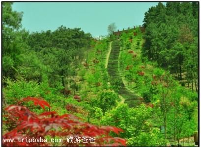 香草世界 - 景點展示