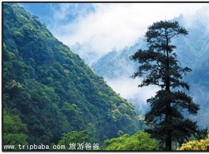 武夷山 - 景點展示