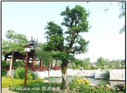 園博苑 - 景點展示