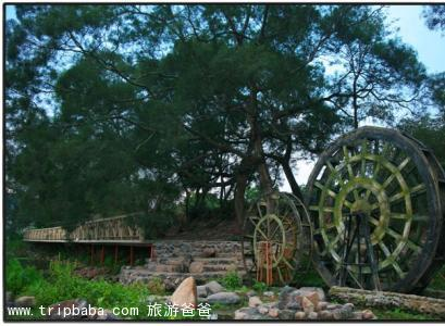绿田园 - 景点展示