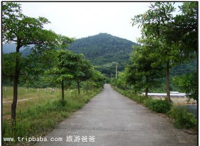 同安文山 - 景点展示