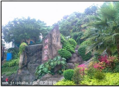 鸿山公园 - 景点展示