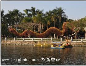 中山公园 - 景点展示