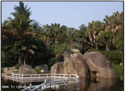万石植物园 - 景点展示