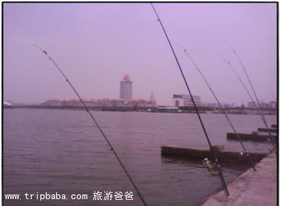 釣魚基地 - 景點展示