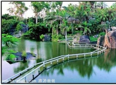 菽庄花园 - 景点展示