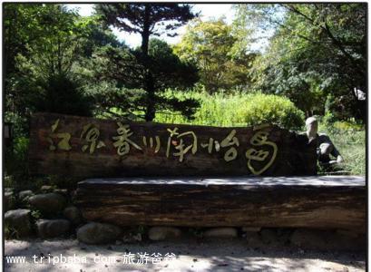 韓國 - 景點展示