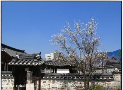 韩国 - 景点展示
