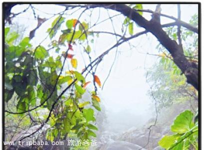 仙人谷 - 景点展示