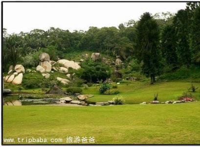 万宝山果园 - 景点展示