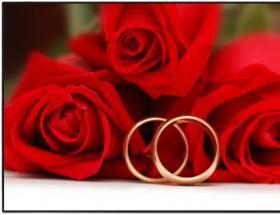 玫瑰花 - 景点展示