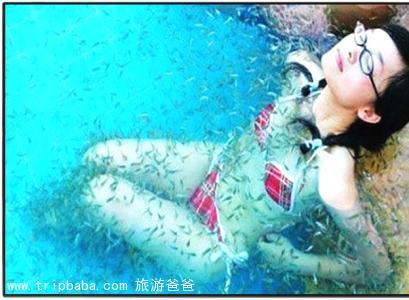 新泉小鱼温泉 - 景点展示