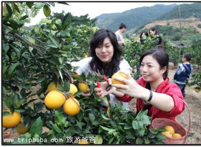 龙台山 - 景点展示
