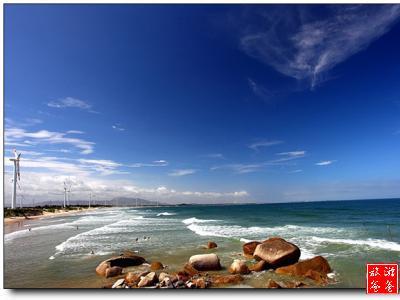 海边旅游组织结构图