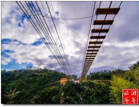 挑战华东最长滑索、高空阶梯桥+畅游丽田园一日游