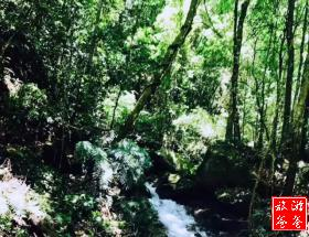 【周末散拼】仙游九鲤湖观瀑布汽车一日游
