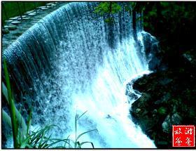 【團隊咨詢】熱帶雨林風光登頂野山谷、玩樂玻璃橋休閑一日游
